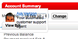 Picture of Verizon web site